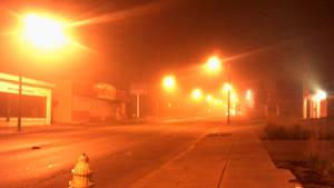 Foggy Pine Avenue