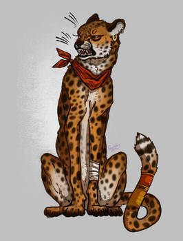 The Cheetah punk