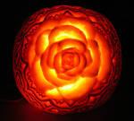 Rose Pumpkin