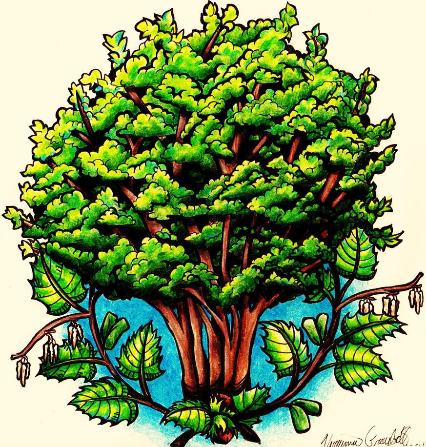 Hazel Tree Tattoo Concept by GinnieGii on DeviantArt