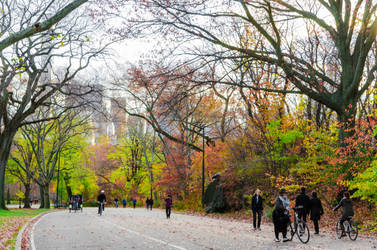 Central Park 79th Street in Autumn by mnjul