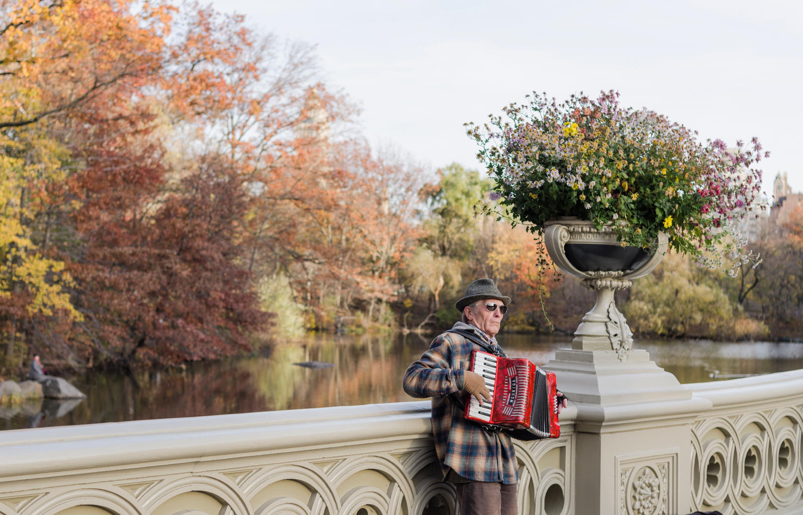 Accordion Player by mnjul