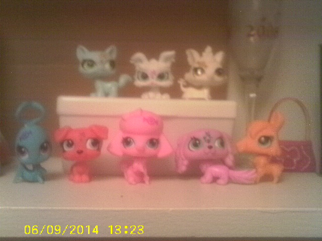 My Littlest Pet Shop Critters by AnnieSmith
