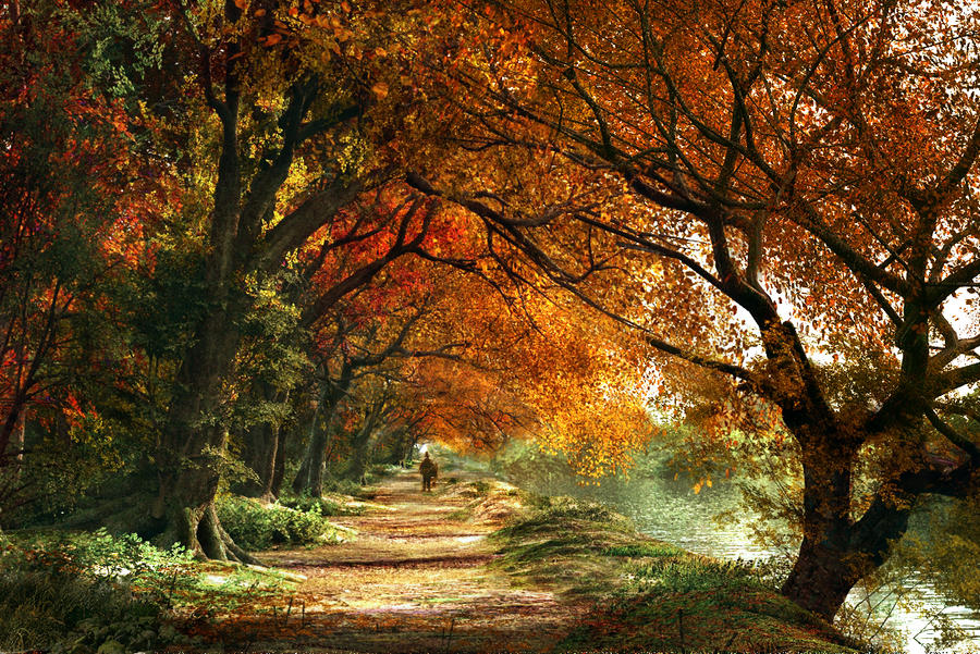 Forever Autumn By Digital Dom On Deviantart