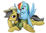 Rainbow Dash with Daring Do