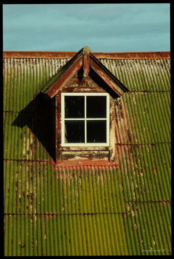 Window by Intrigueme