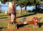 Where the Gnome am I Shoreline Park Wood Carving 5 by awesome43