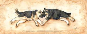 Shepherds of Love