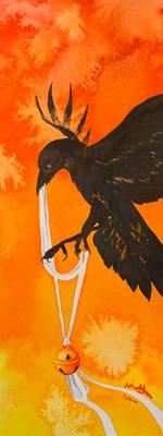 Phoenix's Shadow