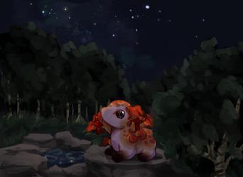 summer stargazing by dailydaydreams