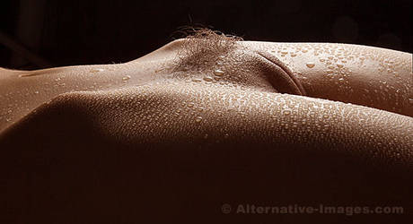 Moist by Alt-Images