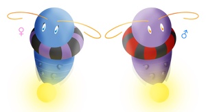 lightifly male and female