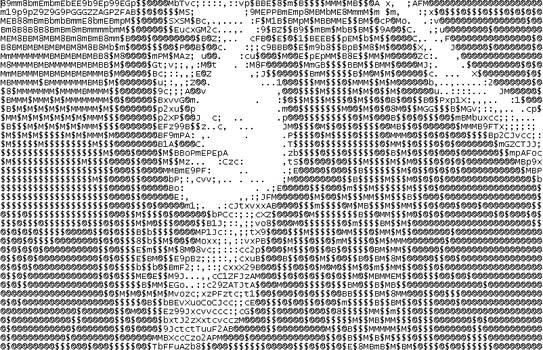 Sofia in ASCII