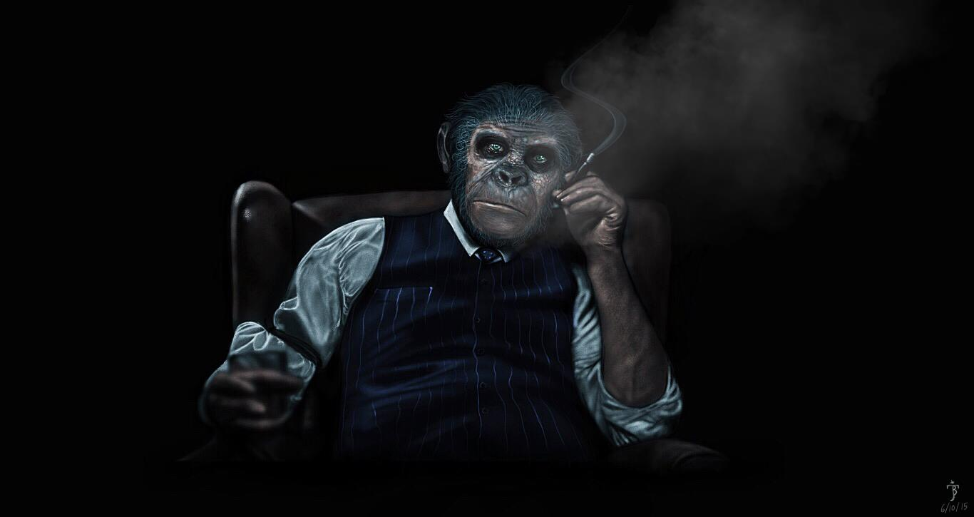gangster monkey by jbsartwork on deviantart