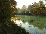 Pond. Sun rays and smoke