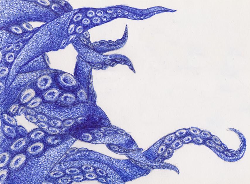 Octopus Drawing By Kokotex ...