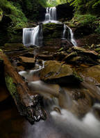 Ricketts Glen Park by Brettc