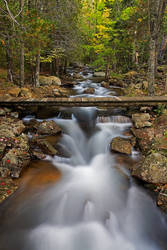 Acadia National Park, Maine by Brettc