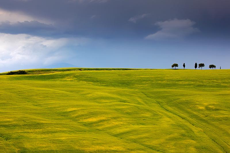 Tuscany by Brettc