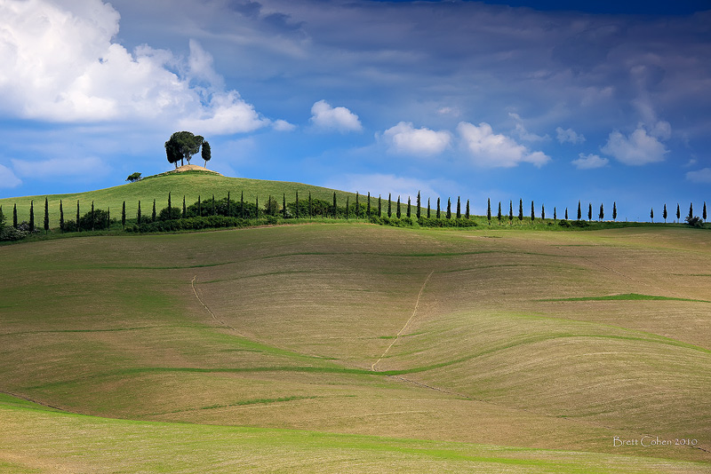 Hills Of Tuscany by Brettc