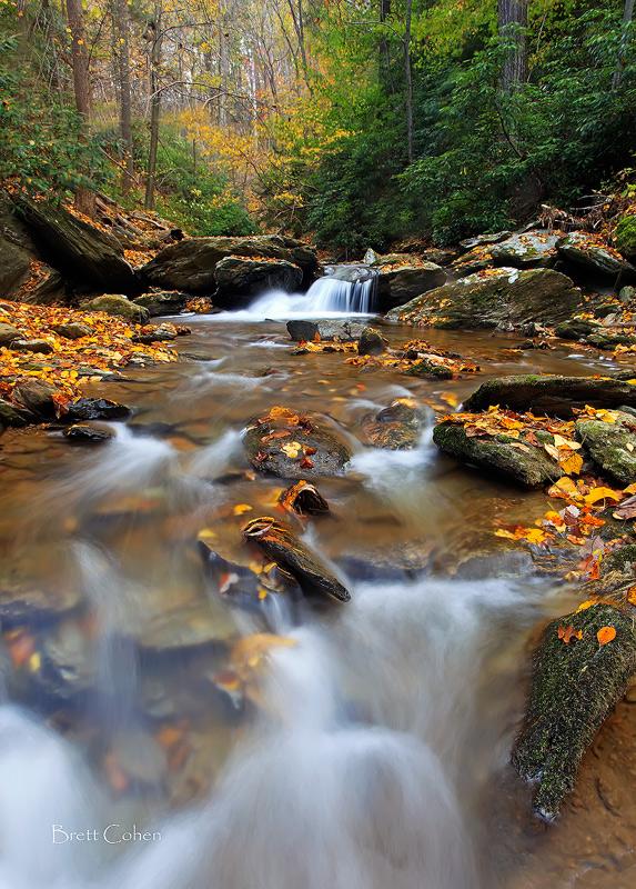 Around The Stream by Brettc