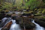 Killarney National Park,
