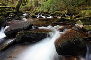 Killarney National Park,,,