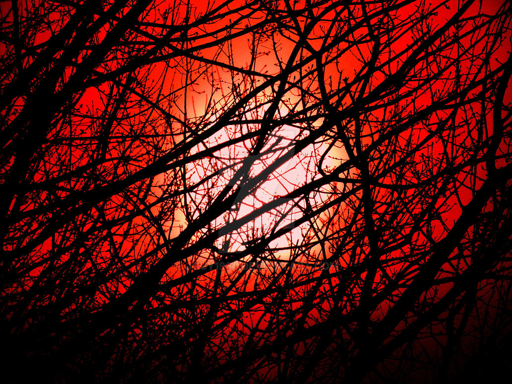 Blood Red Skies by jguy1964
