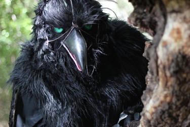 Vrana - Servant of the Crow by Dreadgnat