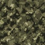 Camouflage colour
