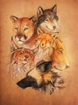 Predators company by WolfsECHO