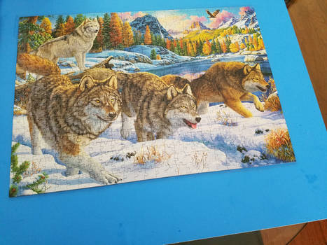The 500 piece puzzle