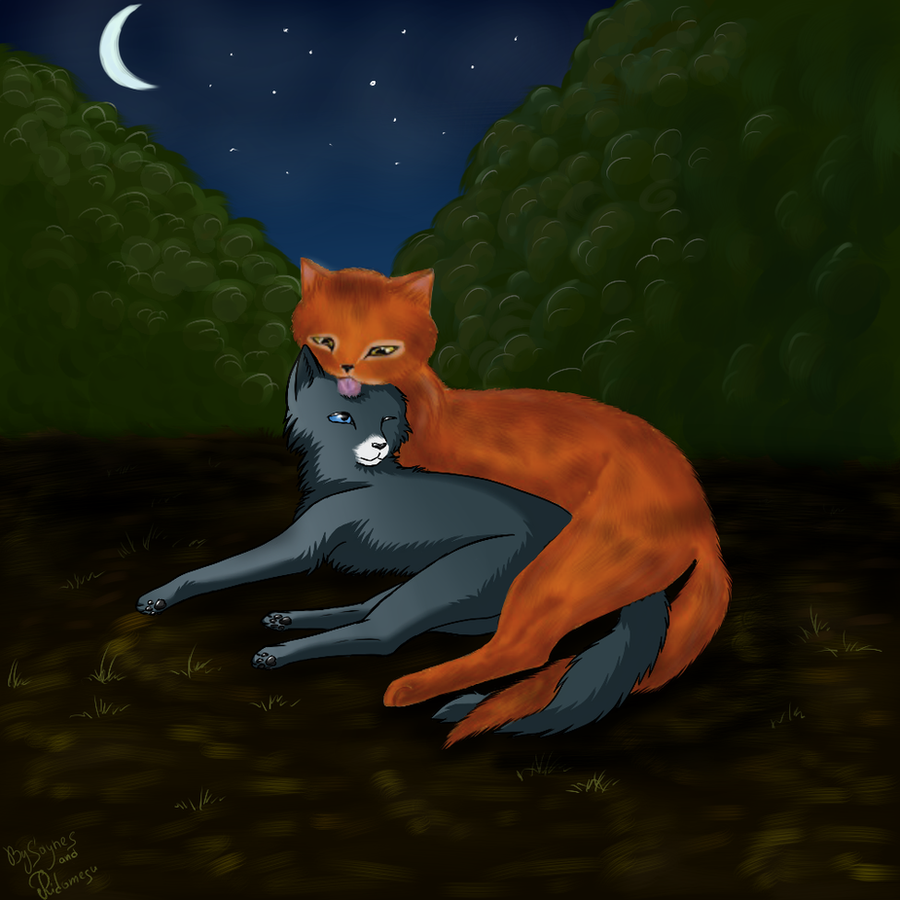 warrior cats was oakheart and bluestar dating