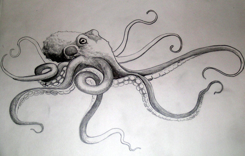 Tako Octopus by dvampyrelestat