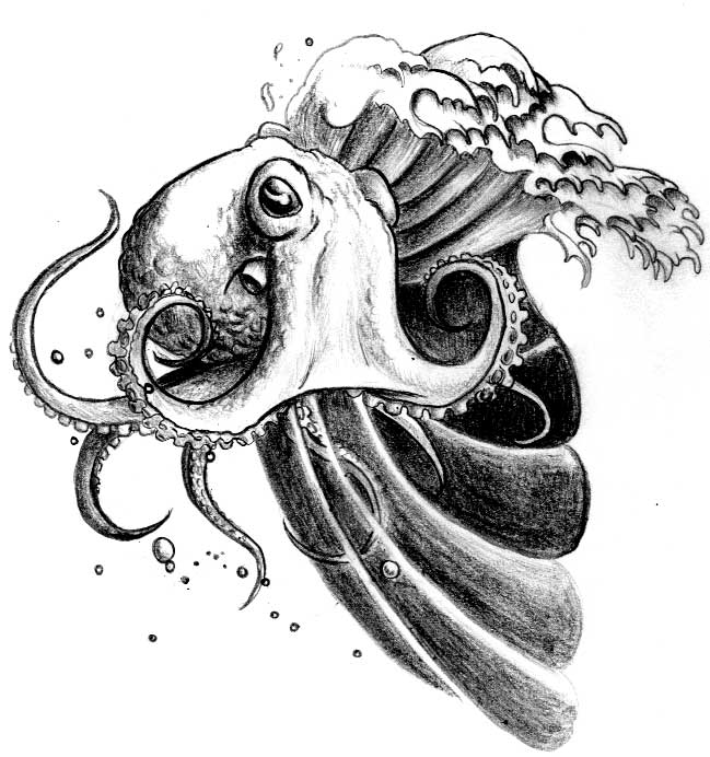 Image Result For Realistic Octopus Coloring