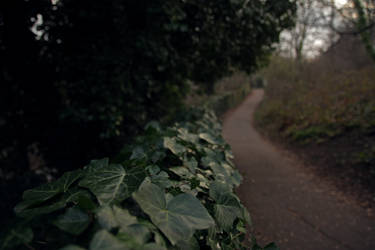 Water of Leith path