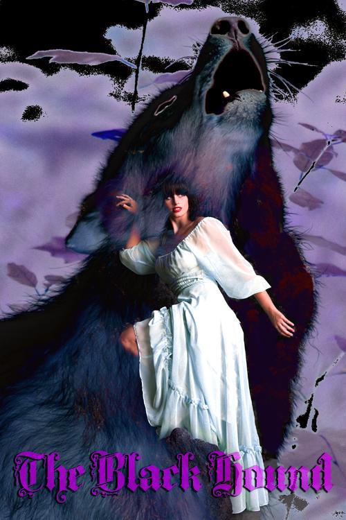 The Black Hound Cover I