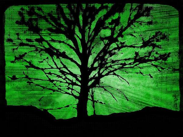 Green Tree by suvipaju