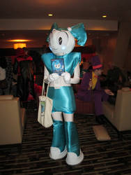 MomoCon 2013: My Life as a Teenage Robot by RedRoses2Kane