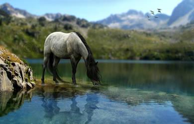 simple lake. by ooralea