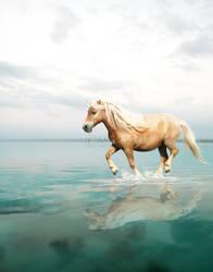 living water. by ooralea