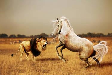 the battle. by ooralea