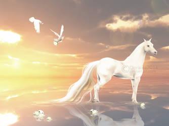 peace. by ooralea