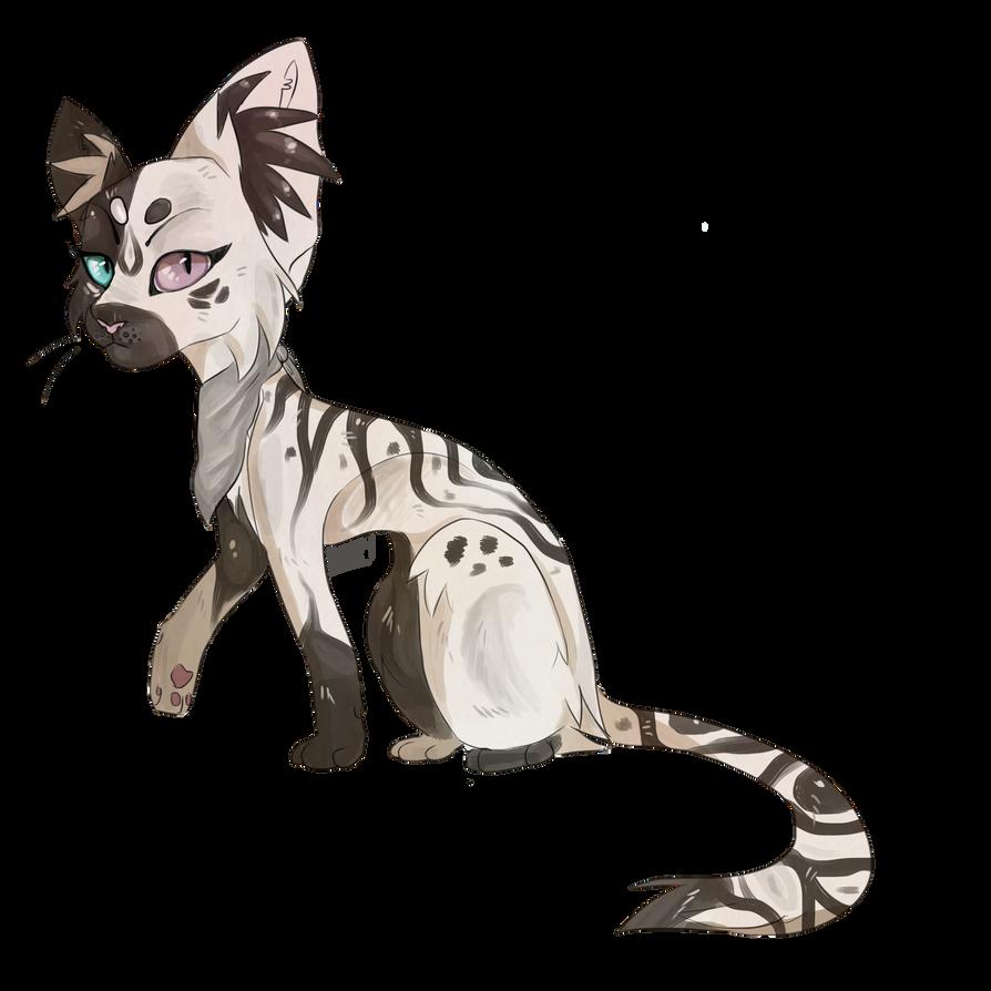 Zebra by Hureji