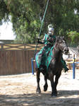 EvenMore Knight Joust Stock 10