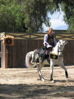 EvenMore Knight Joust Stock 22 by tursiart