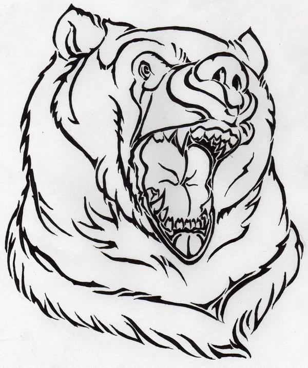 Bear Face Line Drawing : Bear face line drawing