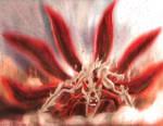 Naruto: Six Tails