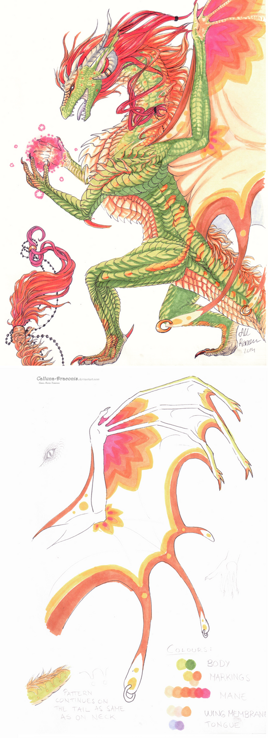 Character Design Contest 2014 : Character design by calluna draconis on deviantart