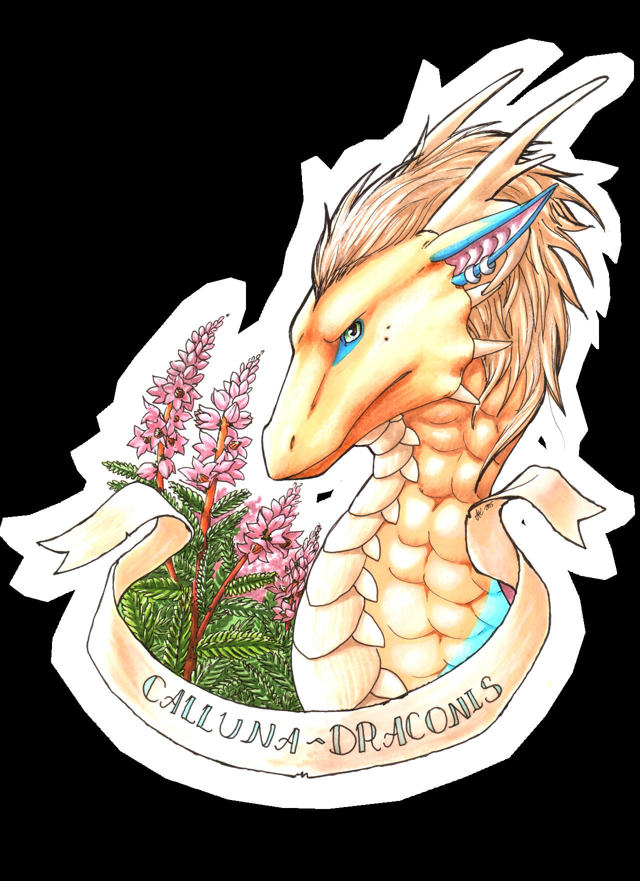 Calluna-Draconis's Profile Picture